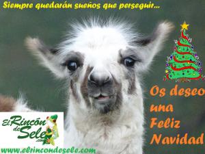 Christmas de El rincón de Sele 2012