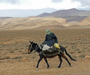 Hombre en burro por el Medio Atlas de Marruecos