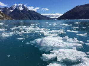 Imagen del sur de Groenlandia