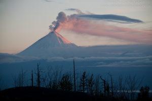 Expedición Kamchatka (Faltan 4 meses)