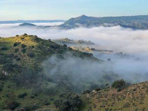 Sierra de Andújar, el territorio del lince ibérico